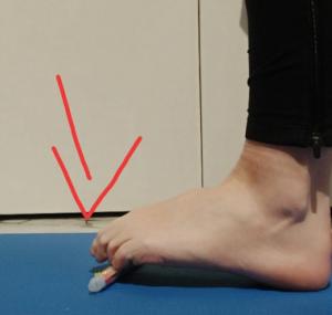 rinforzo flessori piede esercizio a